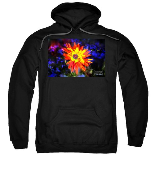 Lily In Vivd Colors Sweatshirt