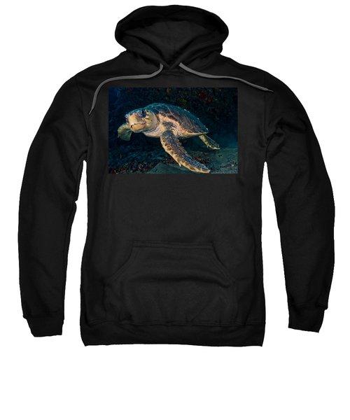 Loggerhead Turtle Under Ledge Sweatshirt