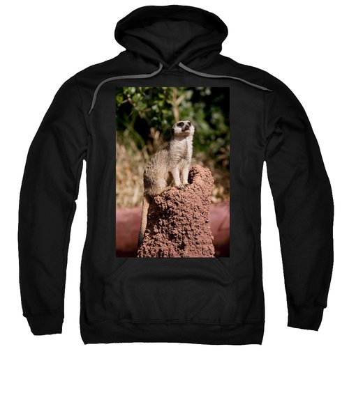 Lookout Post Sweatshirt by Michelle Wrighton