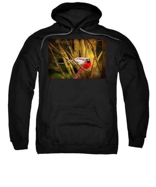 Love In A Dark World Sweatshirt