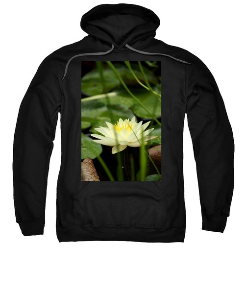 Sweatshirt featuring the photograph Lust by Kim Pate