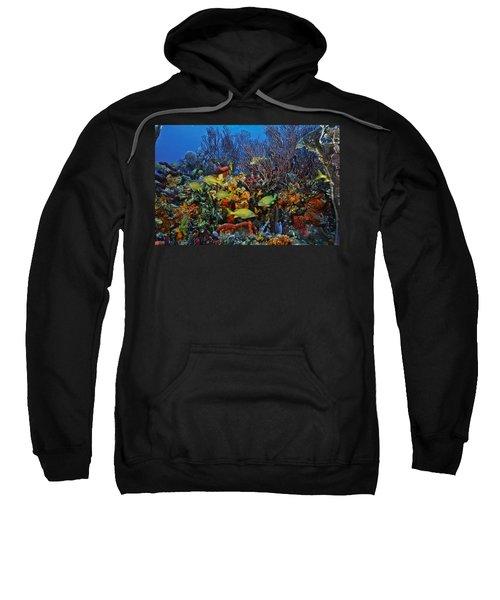 Lynns Reef On A Perfect Day Sweatshirt