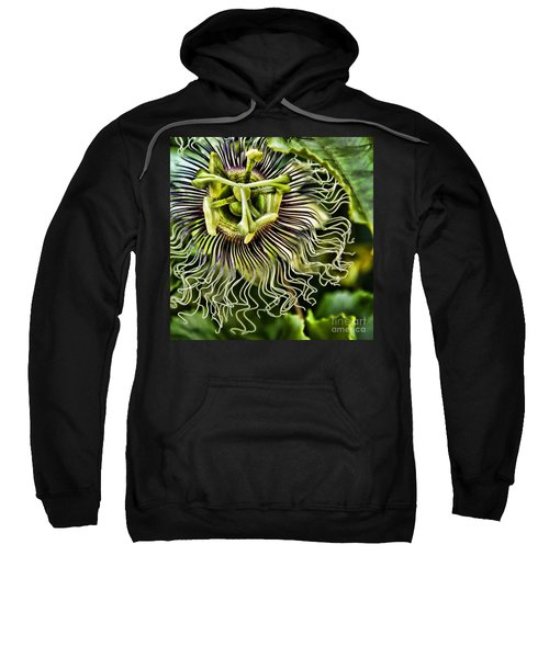 Mad Passion Sweatshirt by Peggy Hughes
