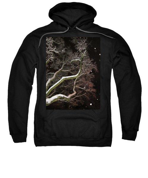 Magic Tree Sweatshirt