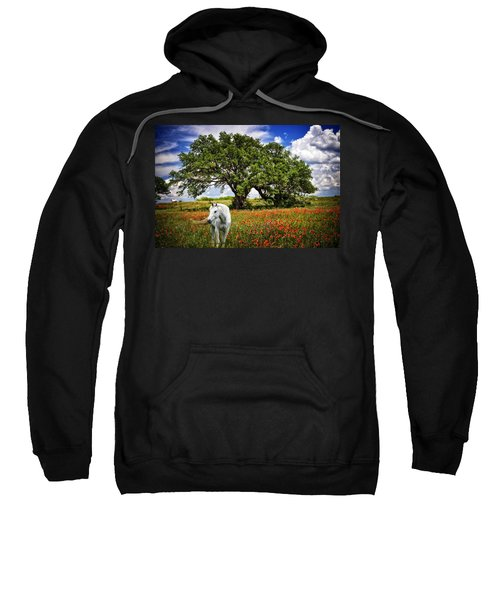 Majestic Beauty Sweatshirt