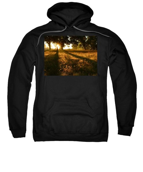 Majestic Oaks Sunrise Sweatshirt
