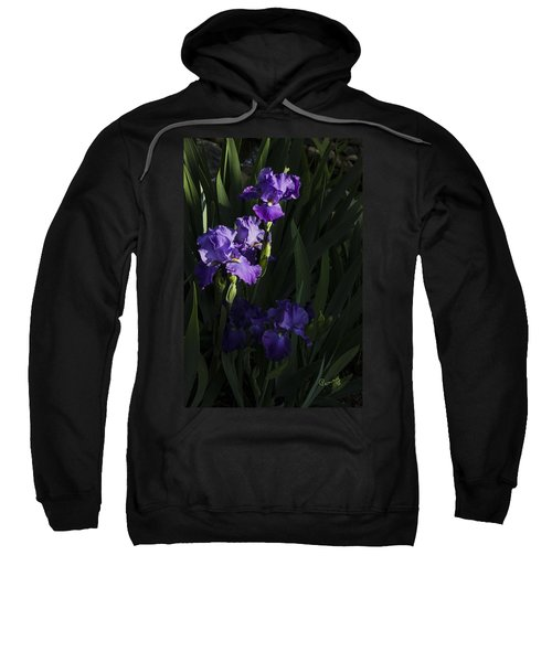 Majestic Spotlight Sweatshirt