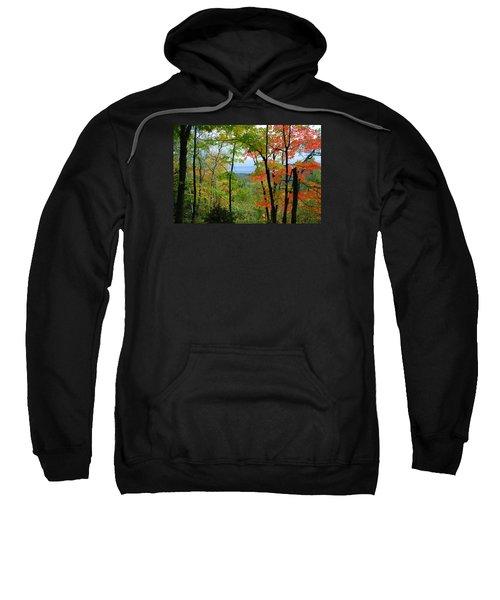 Maples Against Lake Superior - Tettegouche State Park Sweatshirt