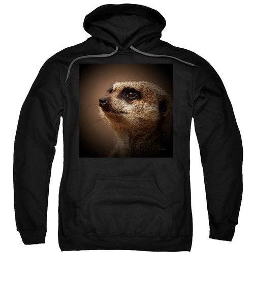 Meerkat 6 Sweatshirt