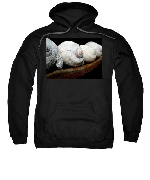 Moon Shells Sweatshirt