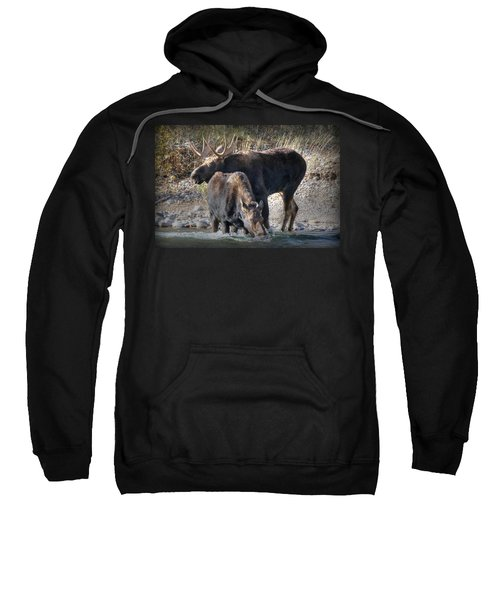 Moosing Around Sweatshirt