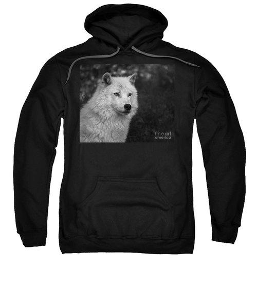 Mr. Arctic Wolf.. Sweatshirt