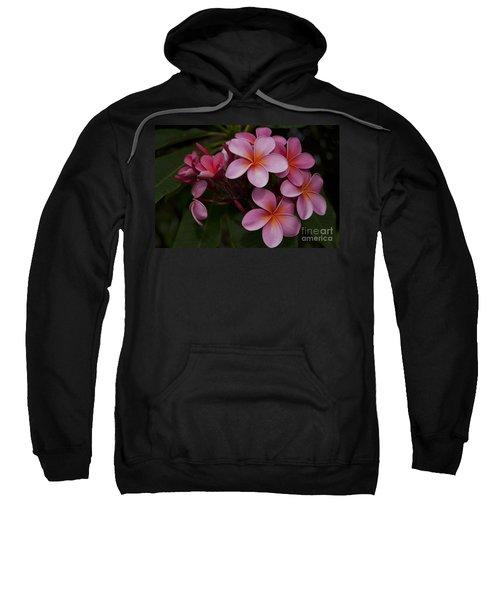 Na Lei Pua Melia O Wailua - Pink Tropical Plumeria Hawaii Sweatshirt