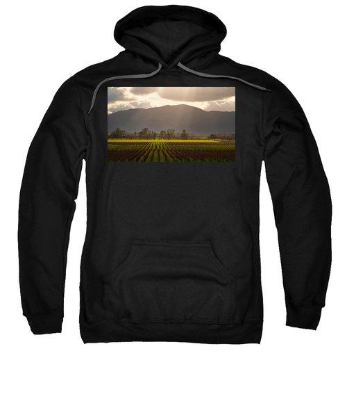 Napa Beauty Sweatshirt