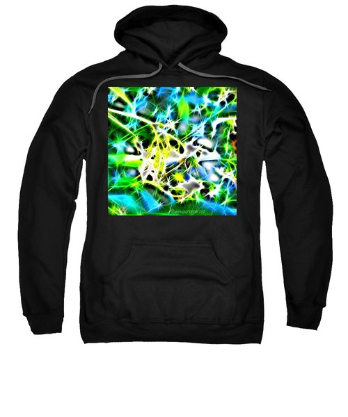 Nature Abstracted Sweatshirt by Anna Porter