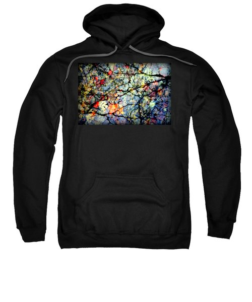 Natures Stained Glass Sweatshirt