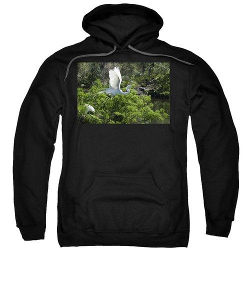 Need More Branches Sweatshirt