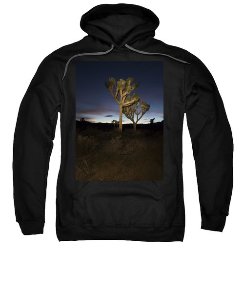 Night Light Painting Joshua Tree National Park Sweatshirt