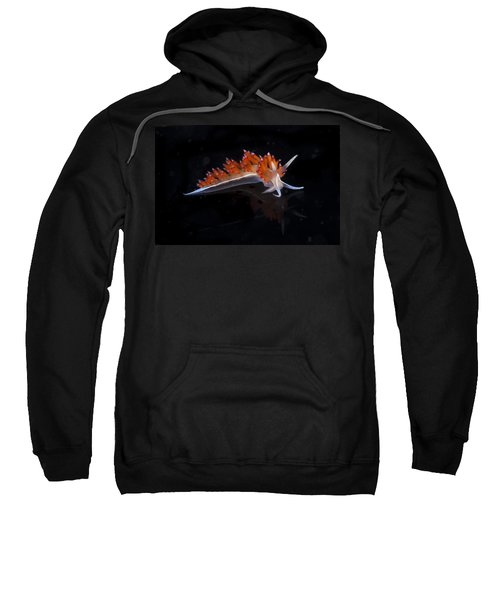 Nudibranch Sweatshirt