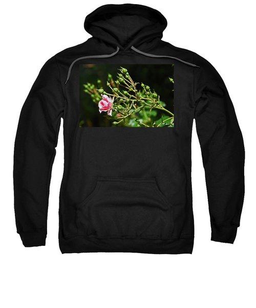 One Blossom Sweatshirt