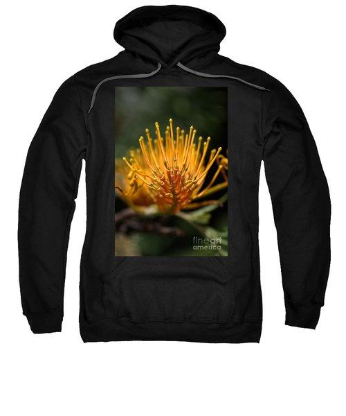 Orange Grevillea Sweatshirt