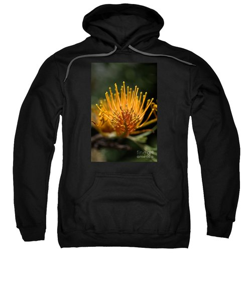 Orange Grevillea Sweatshirt