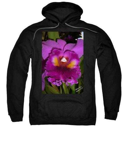 Orchid Flames Sweatshirt