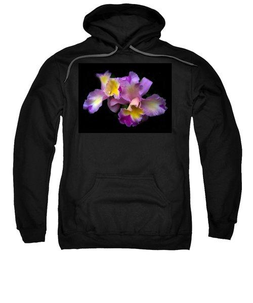 Orchid Embrace Sweatshirt
