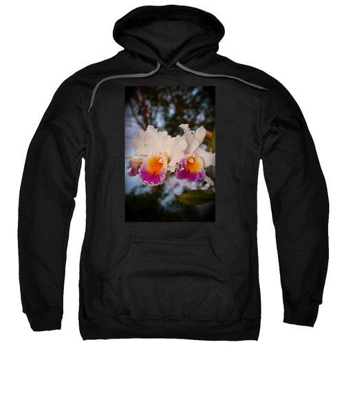 Orchid Elsie Sloan Sweatshirt