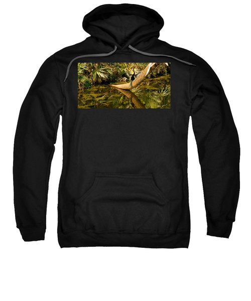 Oriental Darter Anhinga Melanogaster Sweatshirt by Panoramic Images