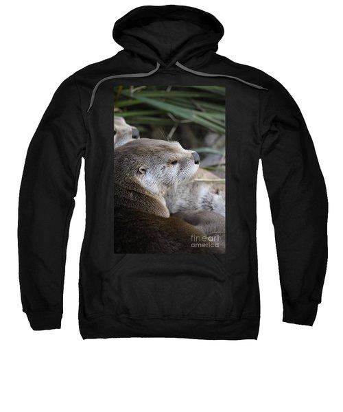 Otter And Family Sweatshirt