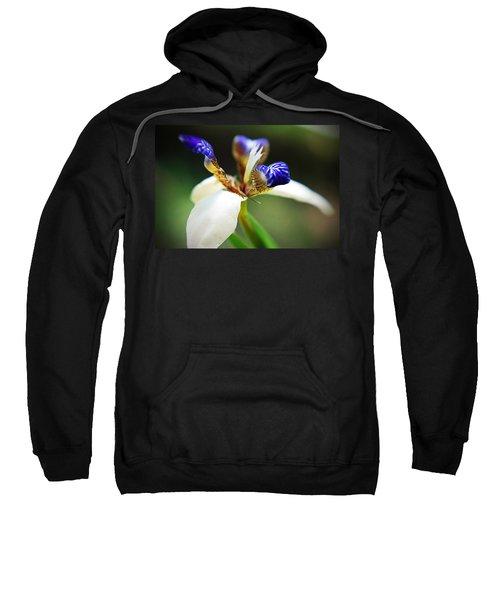 Out My Back Door Sweatshirt