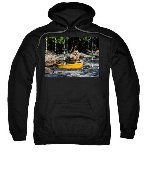 Owlets In A Canoe Sweatshirt