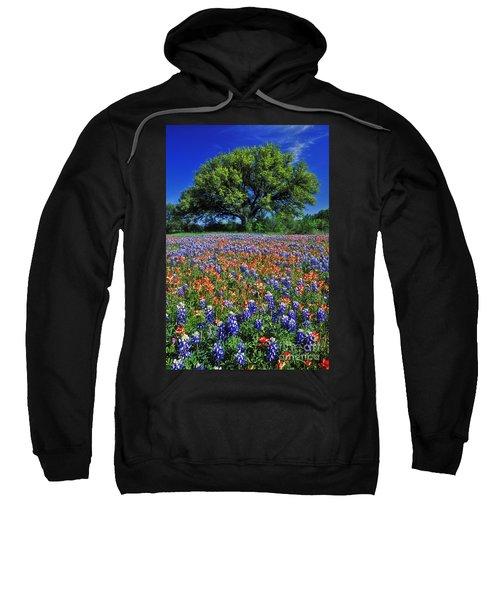 Paintbrush And Bluebonnets - Fs000057 Sweatshirt