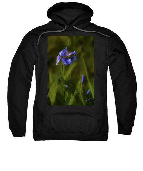 Painted Alaskan Wild Irises Sweatshirt