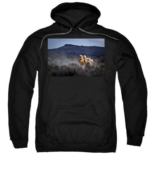 Palomino Buttes Band Sweatshirt