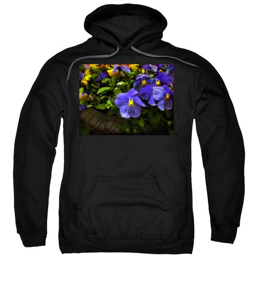 Pansy Planter Sweatshirt