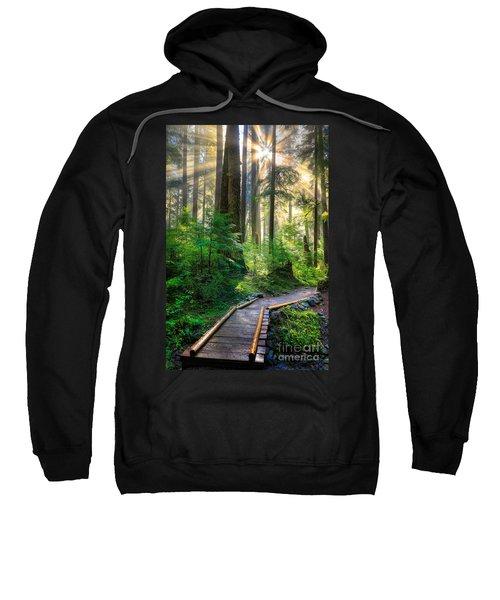 Pathway Into The Light Sweatshirt