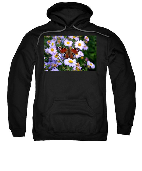 Peacock Butterfly Perched On The Daisies Sweatshirt
