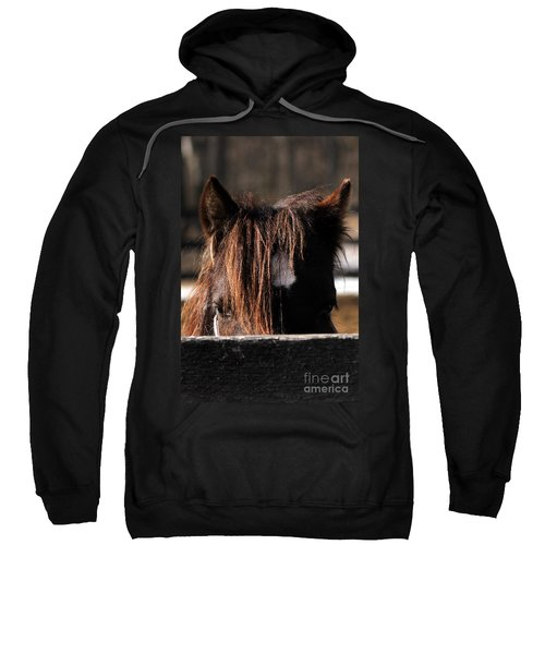 Peek-a-boo Pony Sweatshirt