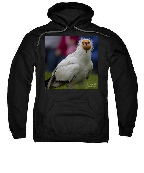 Pharaos Chicken 2 Sweatshirt by Heiko Koehrer-Wagner