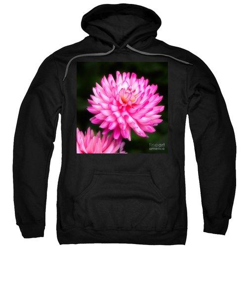 Pink Chrysanths Sweatshirt