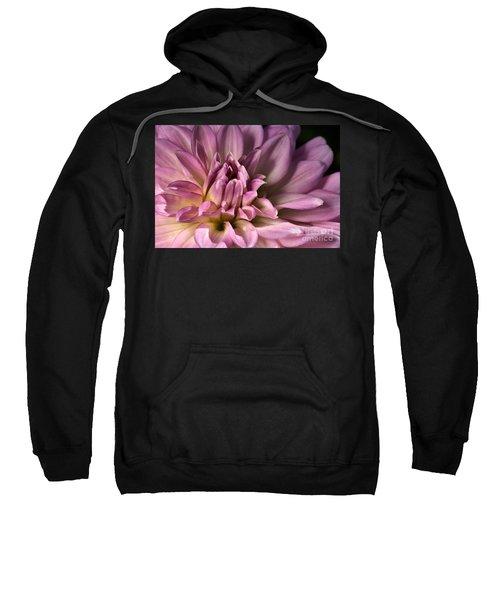 Pink Dahlia's Dream Sweatshirt