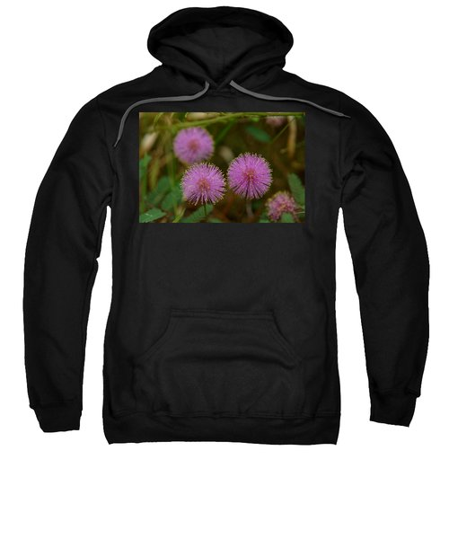Sweatshirt featuring the photograph Pink Mimosa by Kim Pate