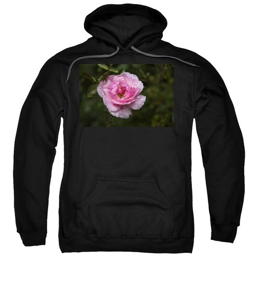 Pink Rose With Raindrops Sweatshirt