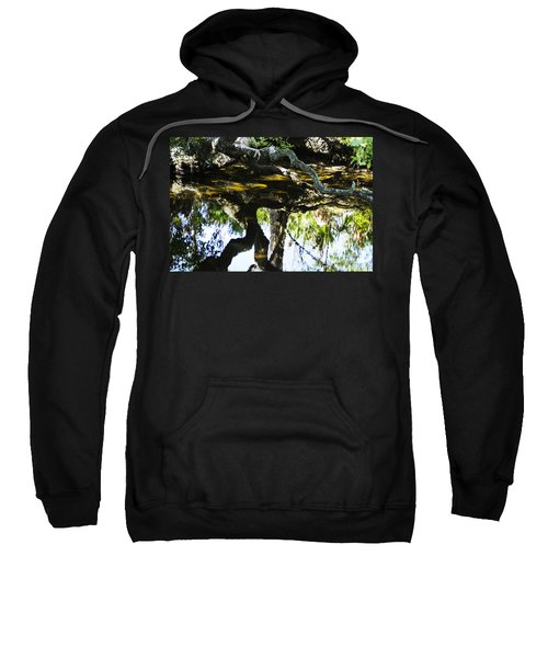 Pond Reflection Sweatshirt