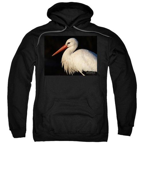 Portrait Of A Stork With A Dark Background Sweatshirt