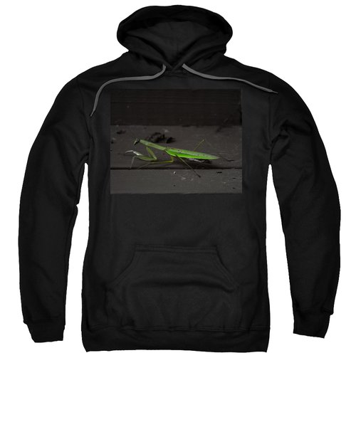 Praying Mantis 2 Sweatshirt