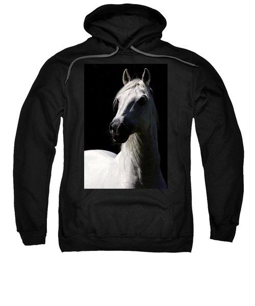 Proud Stallion Sweatshirt