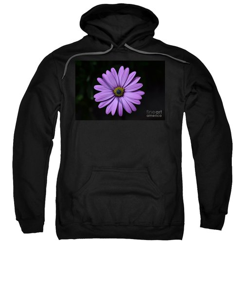 Purple African Daisy Sweatshirt